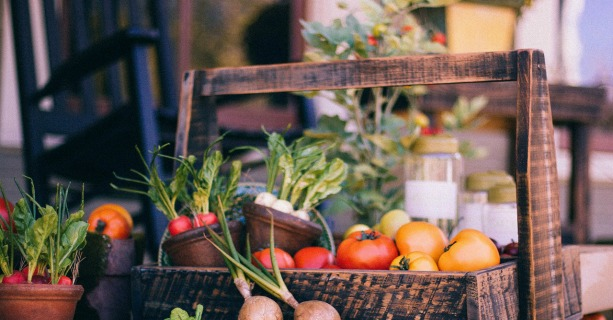 How to Find the Perfect CSA for You