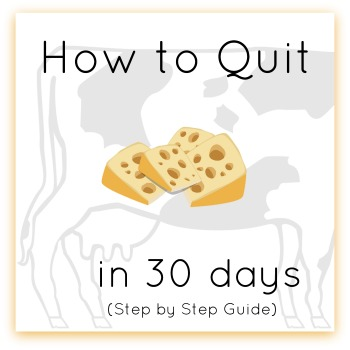 how to quit cheese guide